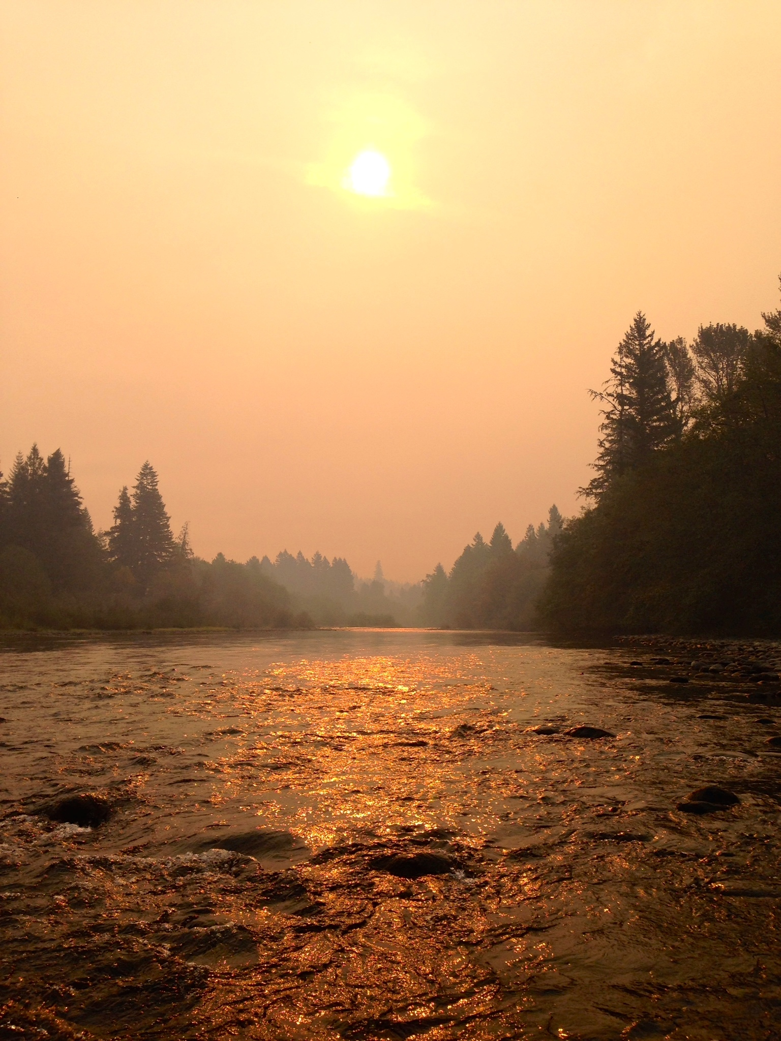 The Clackamas River as seen through the smoke of the 36 Pit Fire while sampling at McIver Park- 9/15/14.